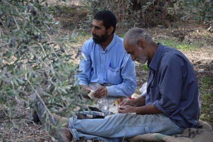 Trabas a la reagrupación familiar de refugiados en España