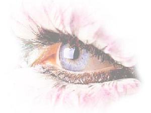 ojolucido