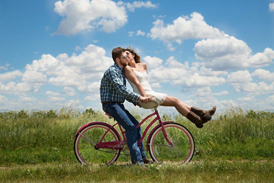 Inscripción de parejas de hecho en el País Vasco