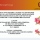 El Consulado de Bolivia en Madrid convoca a federaciones y asociaciones para homenajear a las madres bolivianas