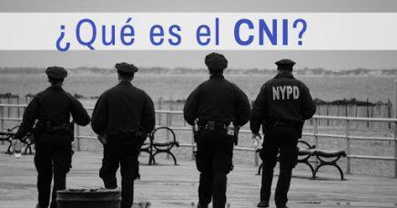 ¿Qué es el CNI?
