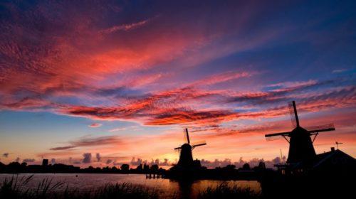 Españoles denuncian abuso laboral en Holanda