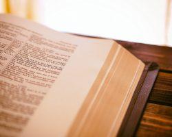 Lista de Traductores e Intérpretes Jurados