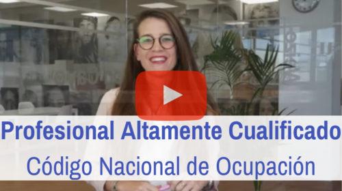 Profesional Altamente Cualificado: Código Nacional de Ocupación