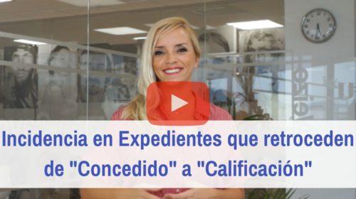 Expedientes de Nacionalidad española de «Concedido» a «en Calificación»
