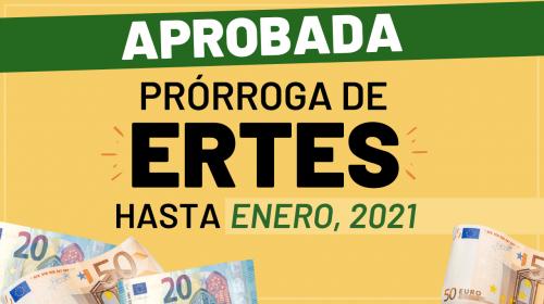 Aprobada la prórroga de los ERTE hasta enero de 2021
